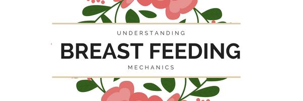 Understanding the mechanics of Breast feeding