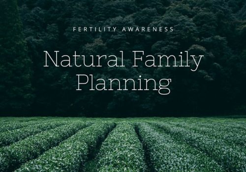 Natural Family Planning Dr Gan