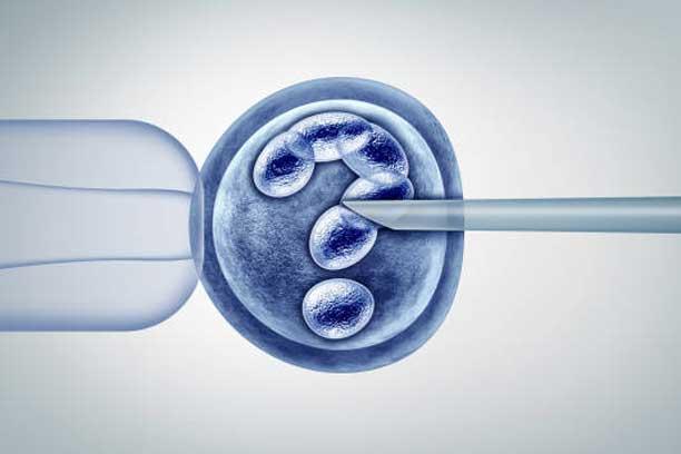 FERTILITY-&-IVFs